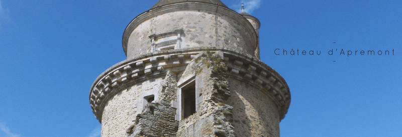 couv-chateau-apremont-senin