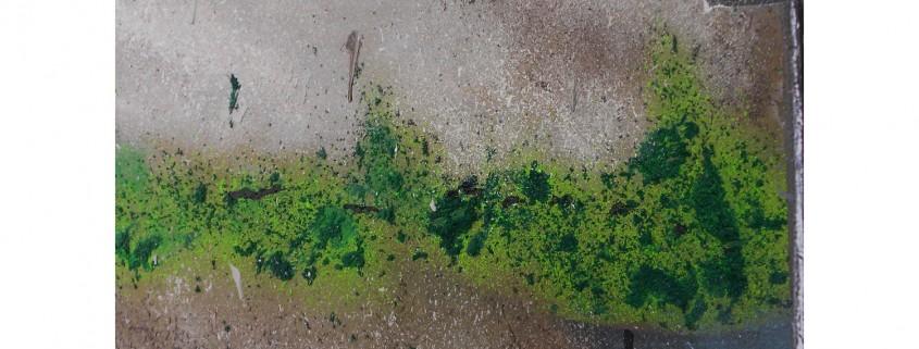 www Matières : papier, sable, encre Dim. : 50 x 70 cm